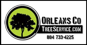 Tree Service In Richmond Virginia