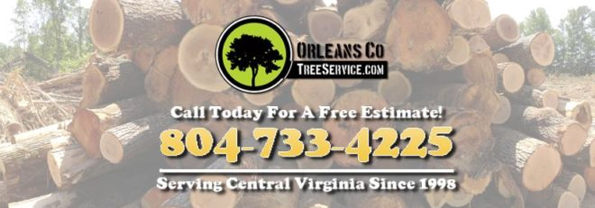 24 Hour Emergency Tree Service In Metro Richmond VA